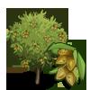 Dwarf Almond