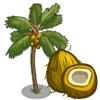 Golden Mayan Coconut