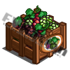Grapes Fruitcrate
